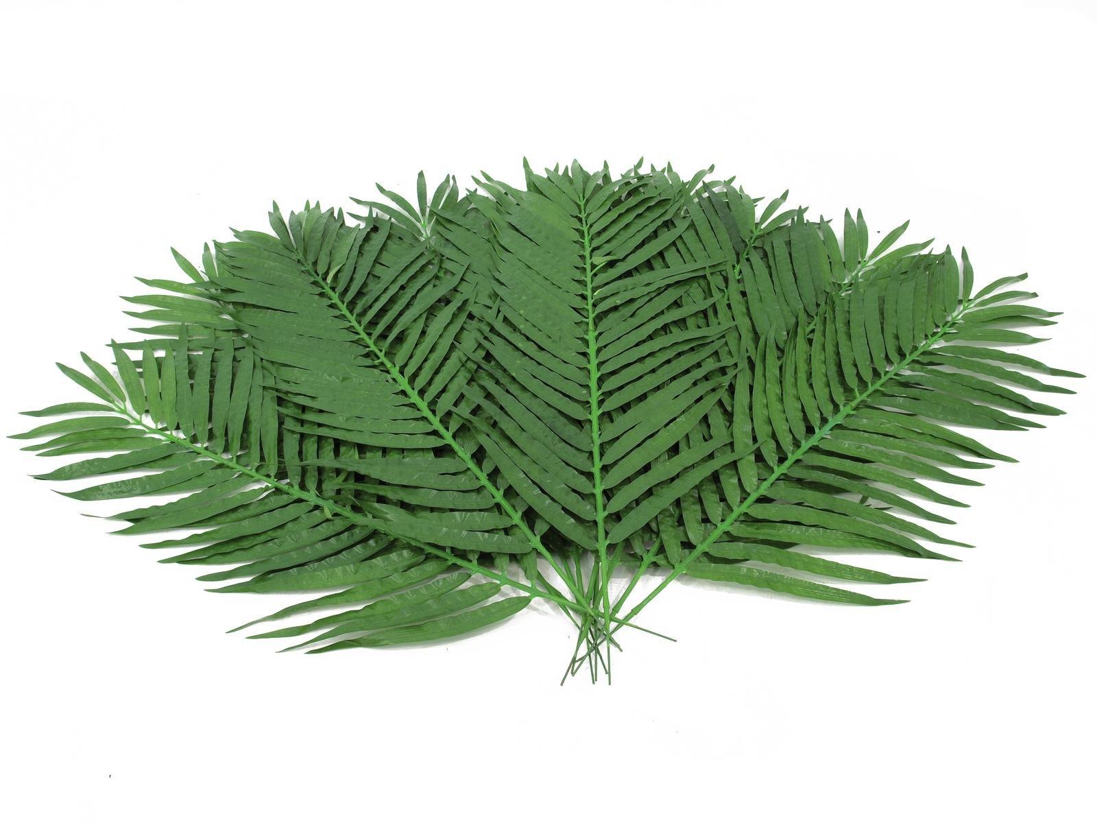 Palm Takken