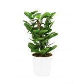 Groene deco plant, 30cm