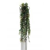 Hedera deluxe, groen/rood, 160cm