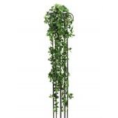 Klassieke Hedera, 160cm