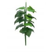 Caladium plant, 90cm