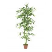 Bamboo, 150cm