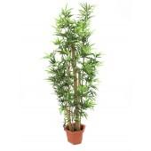 Bamboo met natuurlijke stelen, 225cm
