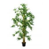 Bamboo Multistam, 210cm