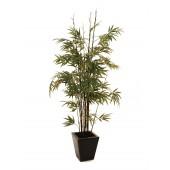 Bamboo met donkere stam, 150cm