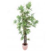 Bamboo met donkere stam, 210cm