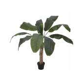 Bananenboom, 100cm