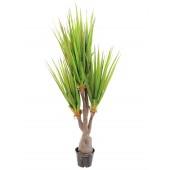 Sabeltand plant, 185cm