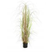 Gras bundel, 150cm