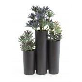 Succulent trio, 43cm
