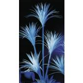 Yucca palm, uv wit, 180cm