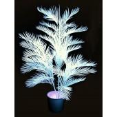 Yucca palm, uv wit, 170cm